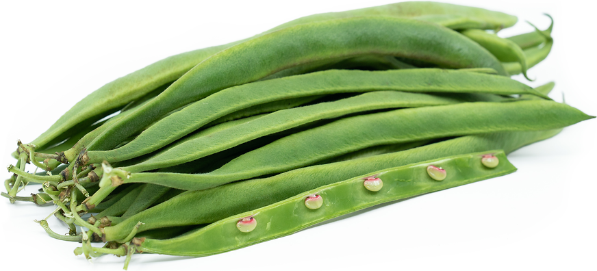 English Runner Beans picture