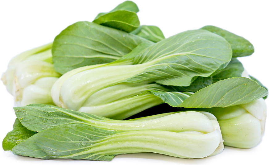 Shanghi Bok Choy picture