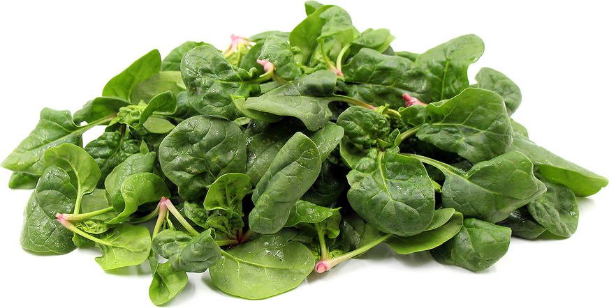 Mandolin Spinach