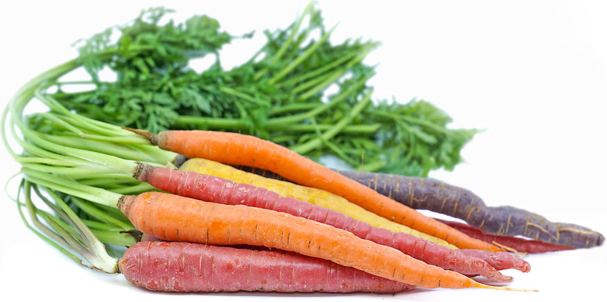 Rainbow Carrots picture