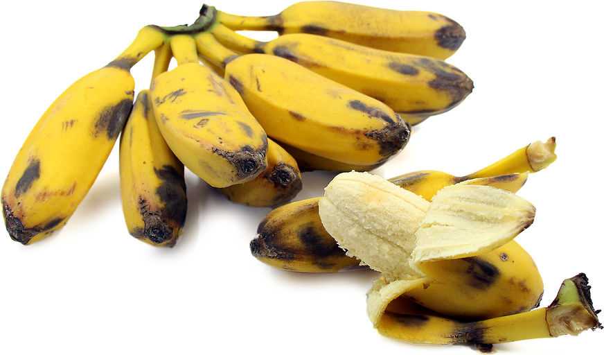 Cardaba Bananas picture