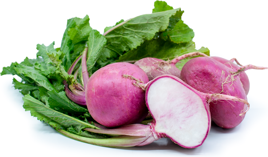 Scarlet Turnips picture
