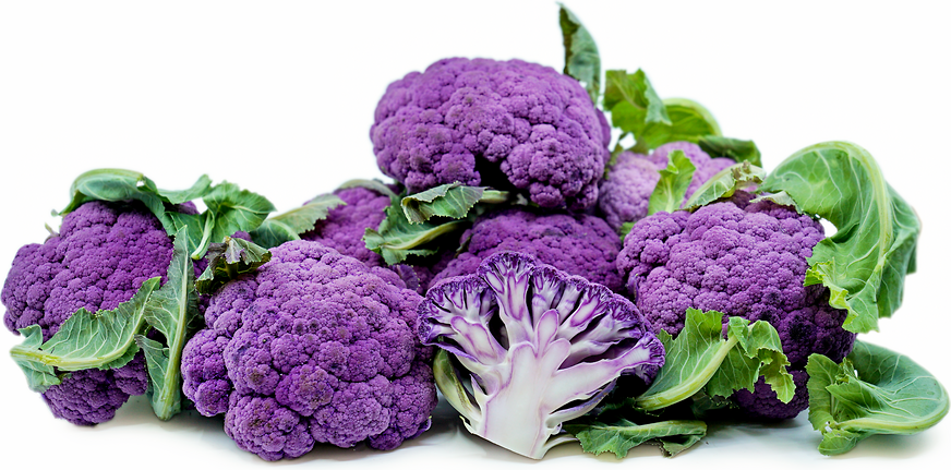 Baby Purple Cauliflower