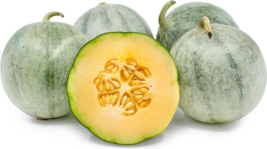 Charentais for Melone charentais