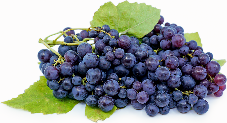 Blueberry Grapes