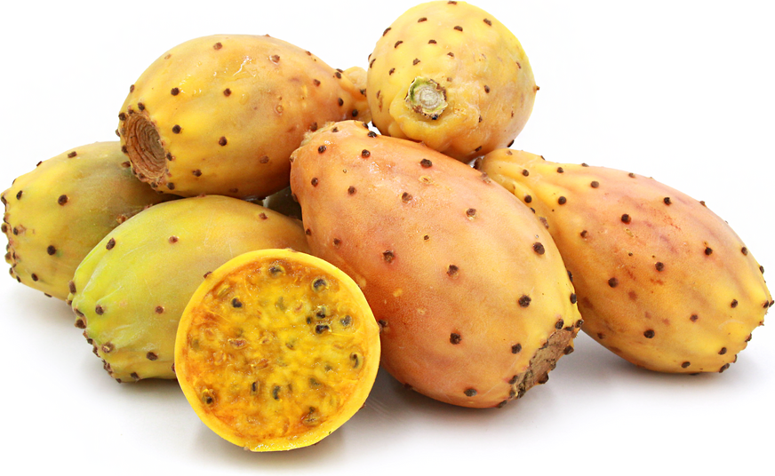 yellow cactus pears information recipes and facts