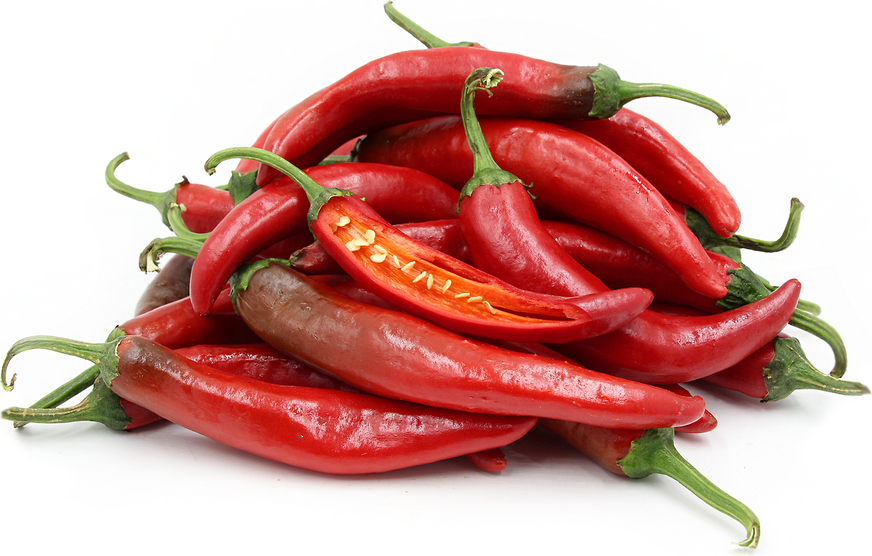 Red Korean Hot Chile Peppers picture