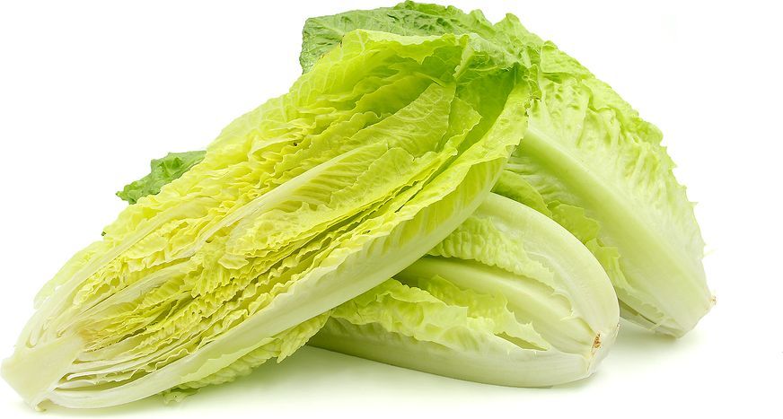 Petite Romaine Hearts picture