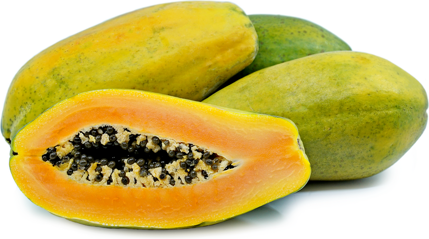 Tainung Papaya picture