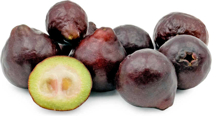 Purple Forest Guavas