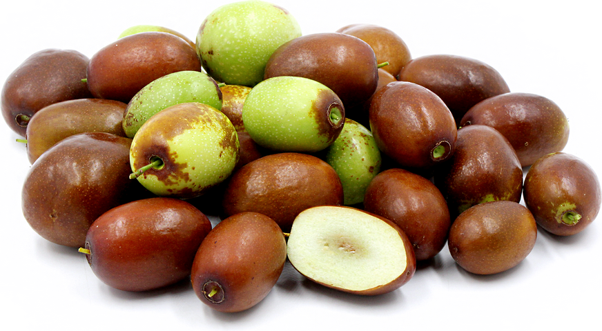 Sherwood Jujube picture