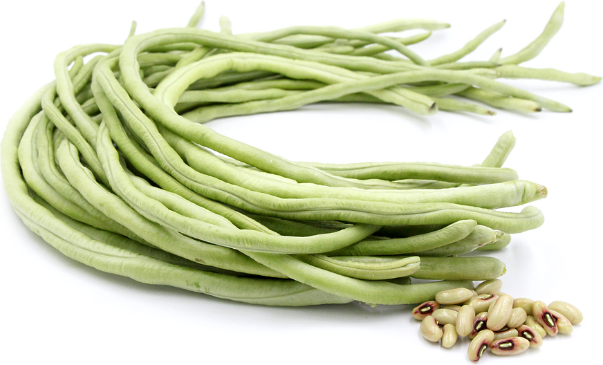 Thai White Seeded Long Bean picture
