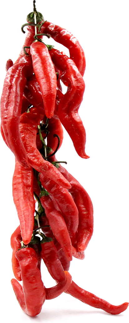 Cayenne Chile Pepper String