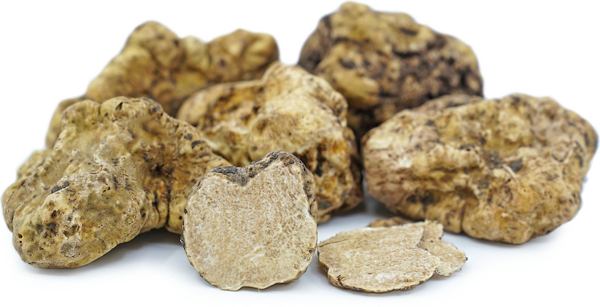 Italian White Winter Truffles