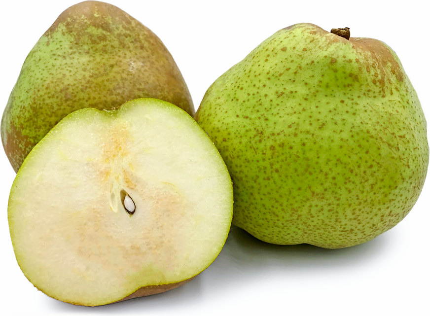 Florana Pears picture