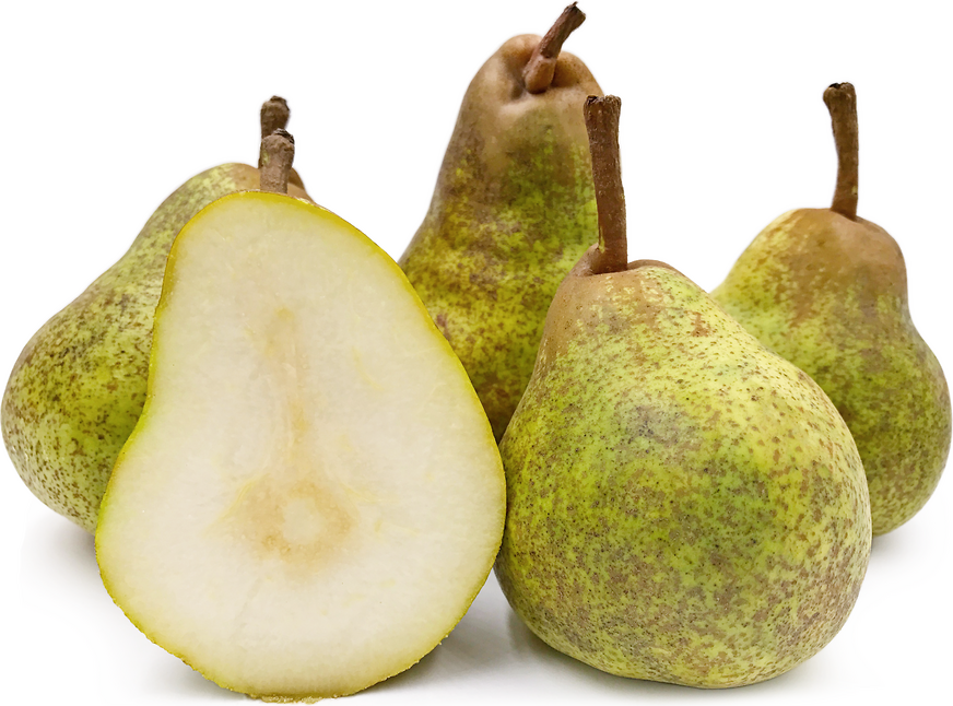 Glou Morceau Pears picture