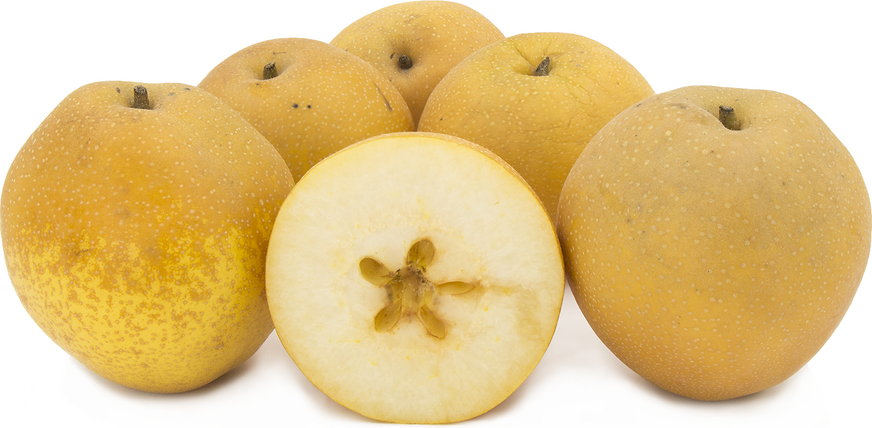 Shinko Asian Pears