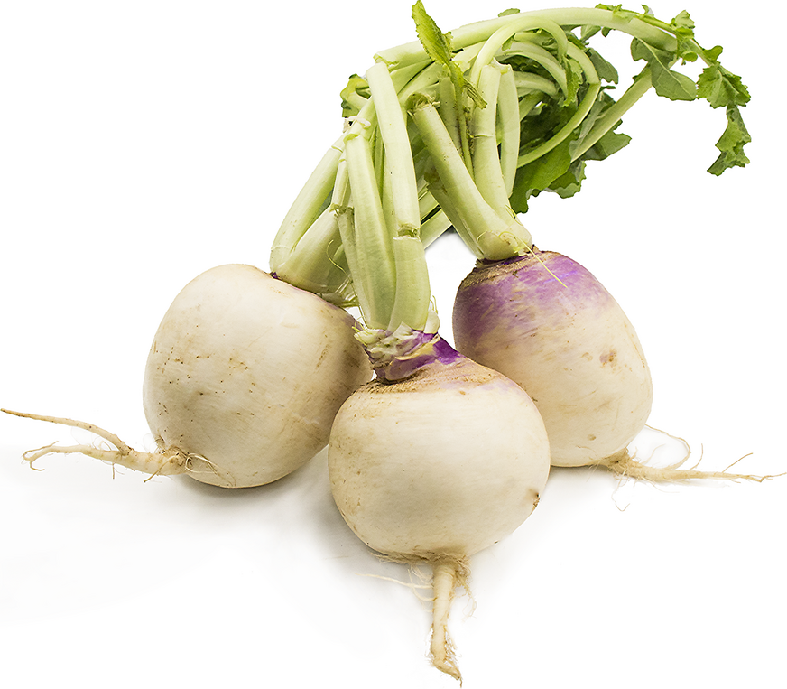 Turnips picture