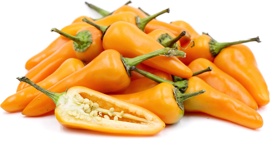 Orange Fresno Chile Pepper