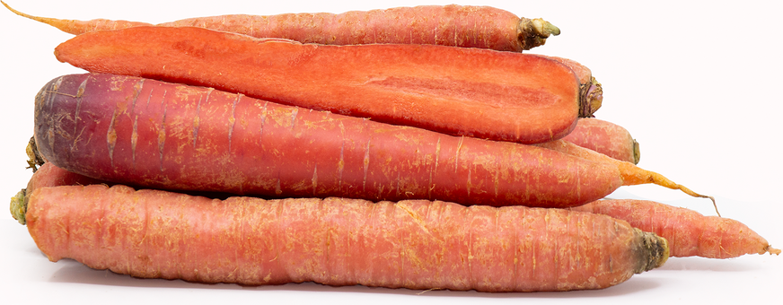 Red Carrots picture