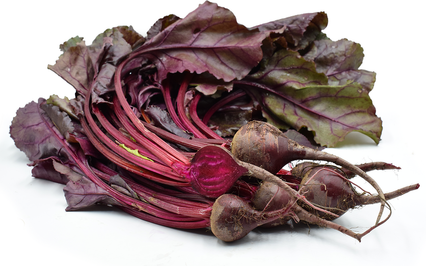 Bull's Blood Beets picture
