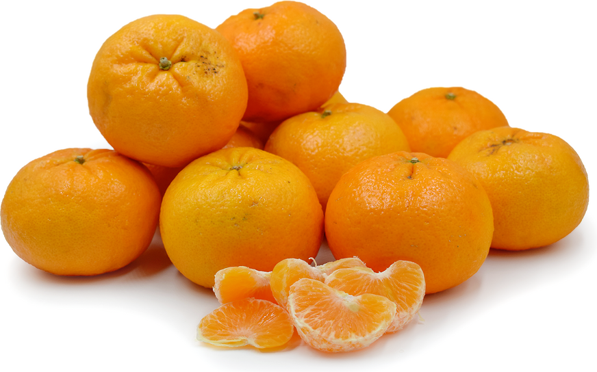 Oroval Clementine Tangerines picture