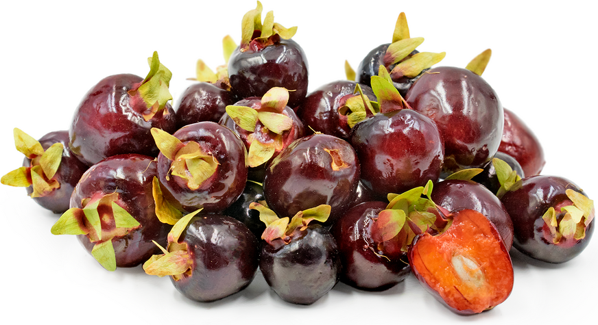 Cherry of the Rio Grande Berries picture