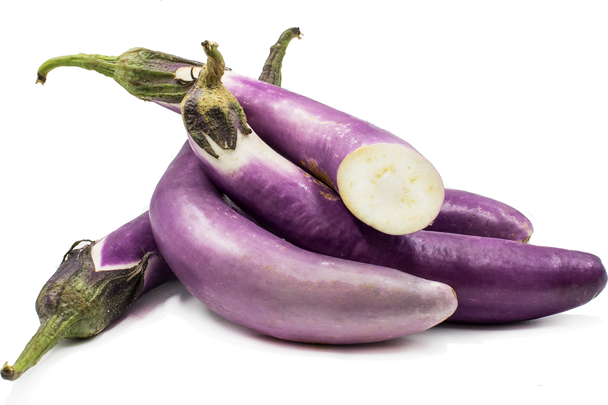 Chinese Eggplant picture