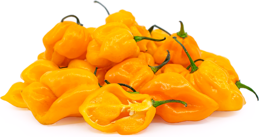 Yellow Scorpion Peppers