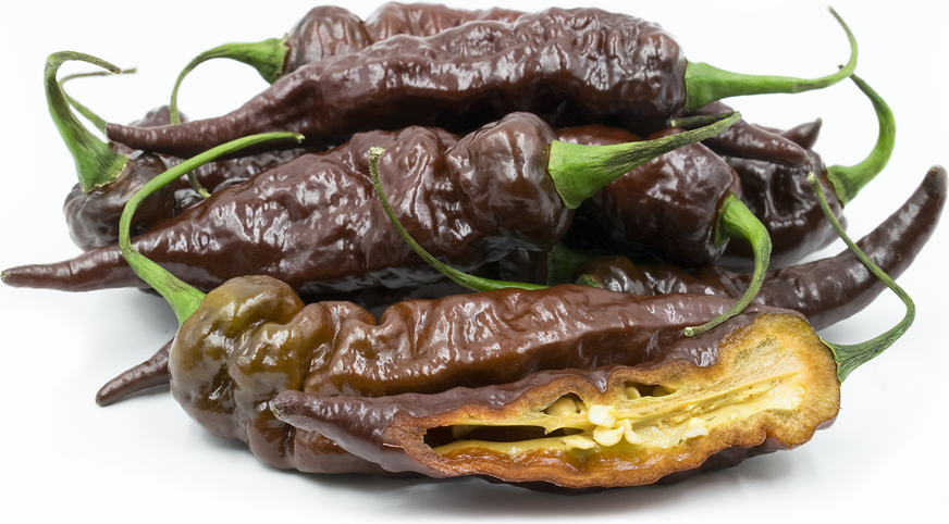Chocolate Ghost Chile Pepper picture