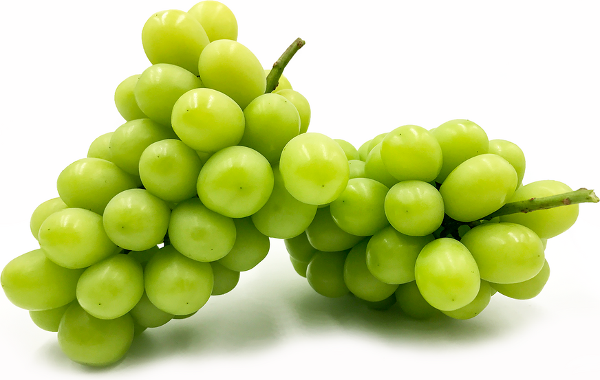 Japanese Muscat Grapes picture