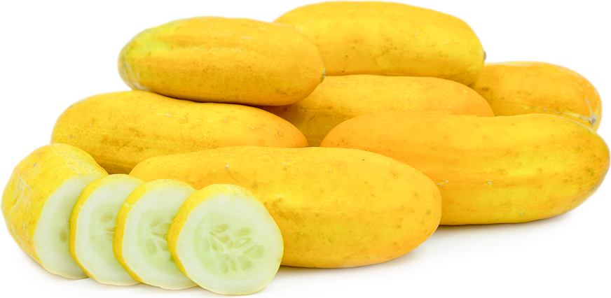 Chinese Yellow Cucumbers picture