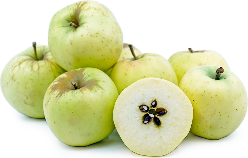 Bellflower Apples picture