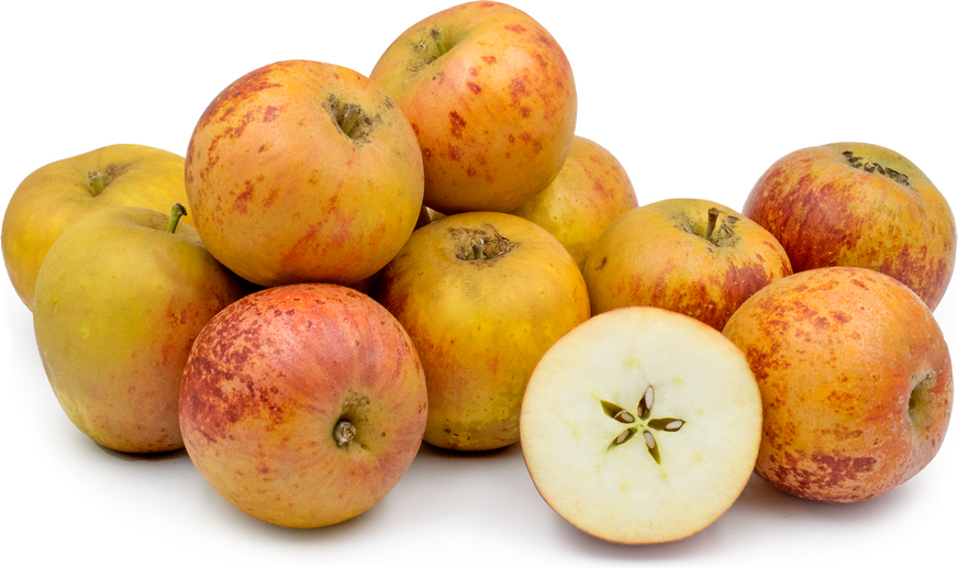 Norfolk Royal Russet Apples