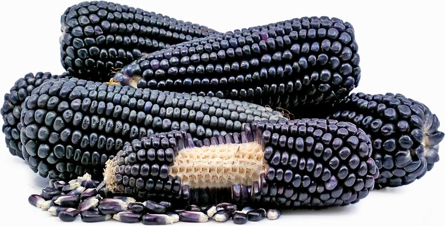 Image result for black corn