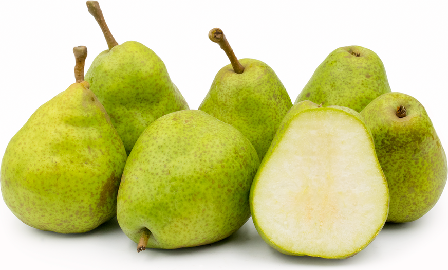 Duchesse d'Angouleme Pears picture