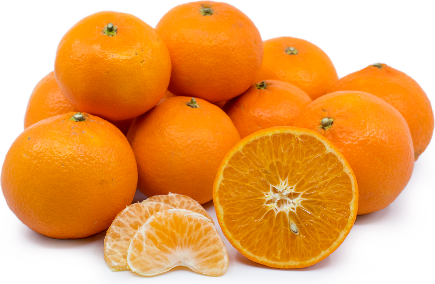 Fortune Tangerines picture