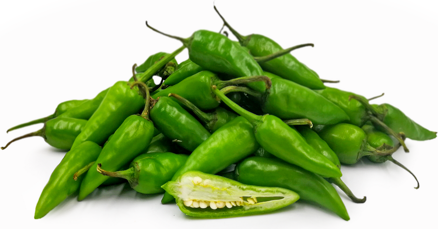 Bullet Chile Peppers Information, Recipes and Facts