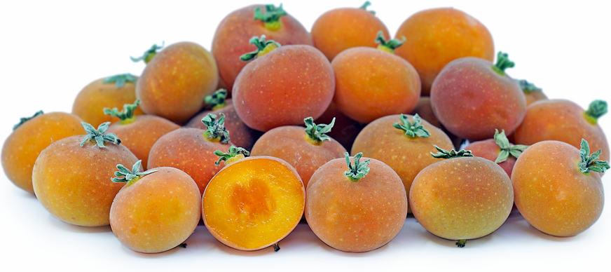 Tropical Apricot Berries picture