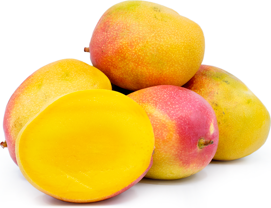 Haden Mangoes picture