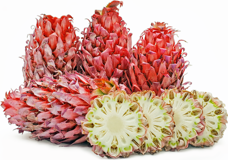 Brazilian Red Pineapples