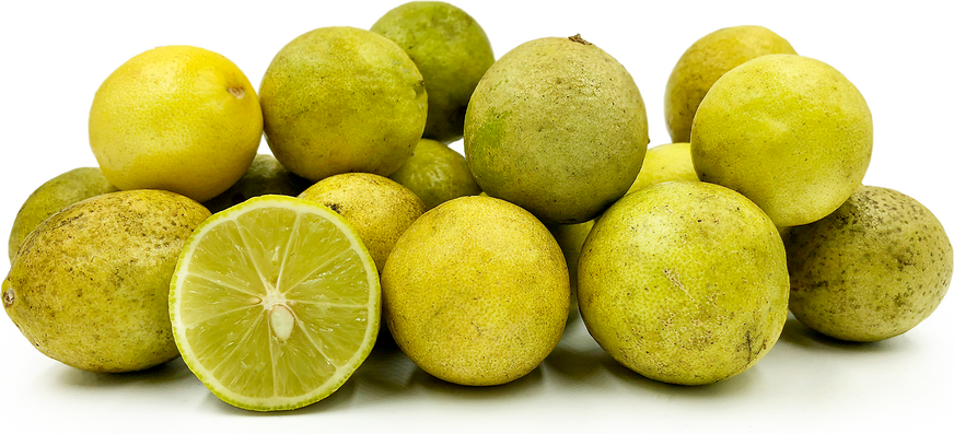 Tahitian Limes picture