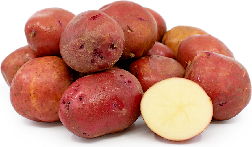Potatoes Kerr's Pink