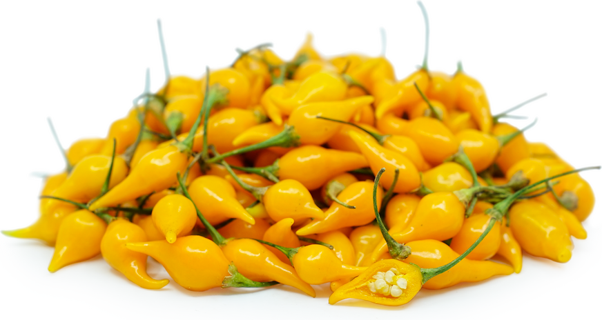 Yellow Biquinhon Chile Pepper