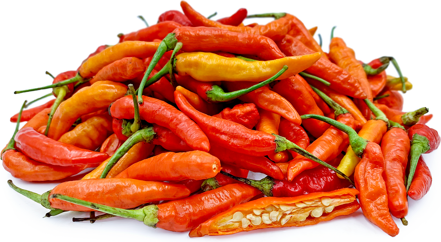 Red Thai Bird Chile Peppers