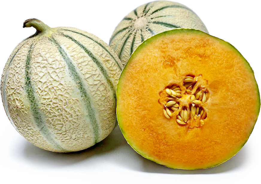 Philibon Melon picture