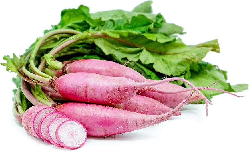 Daikon Blush Radish picture