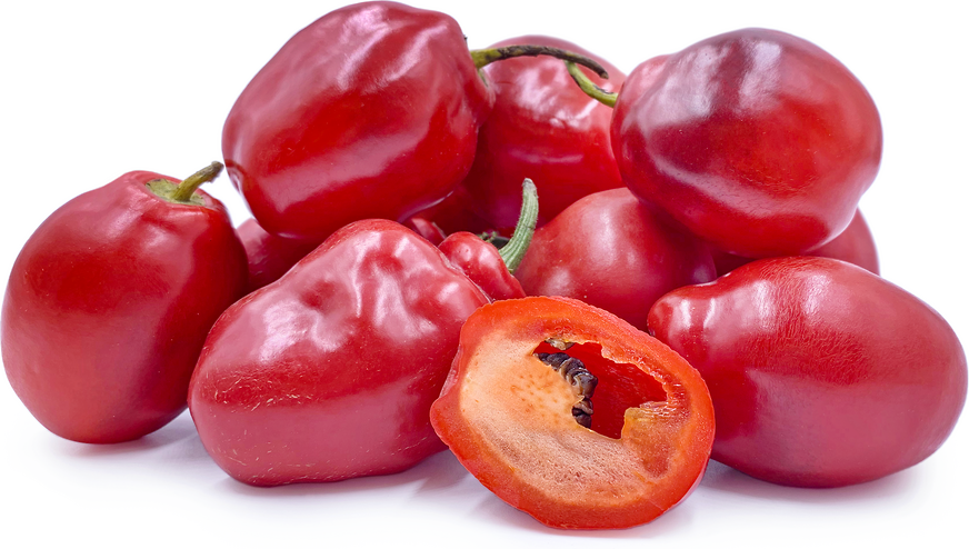Rocoto Chile Peppers picture
