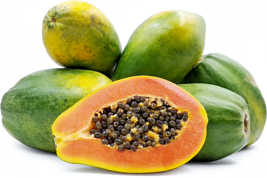 Red Hawaiian Papaya picture