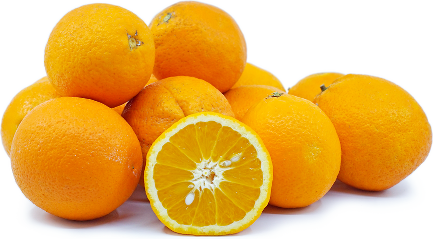 Chinese Marrs Oranges